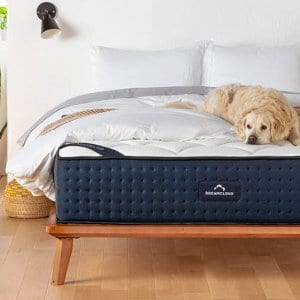 The DreamCloud mattress on a bed.