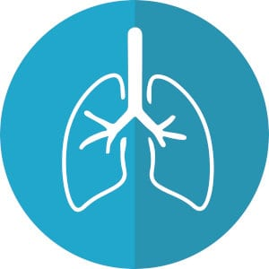 An icon displaying lungs.